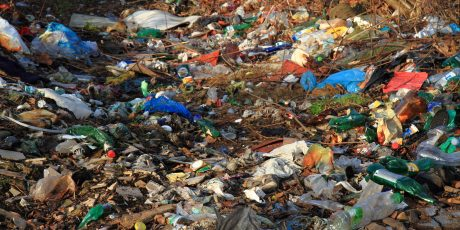 garbage and nature is a big actual problem